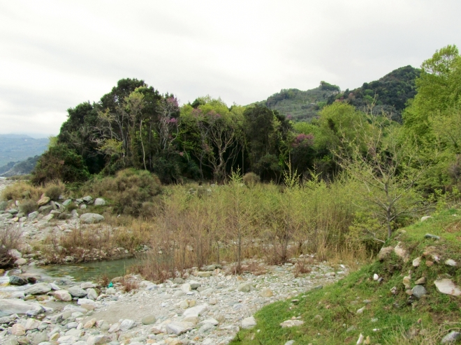 Pelion - The Land of the Centaurs